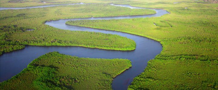 L'Amazonie péruvienne : Explorez les profondeurs de la  jungle