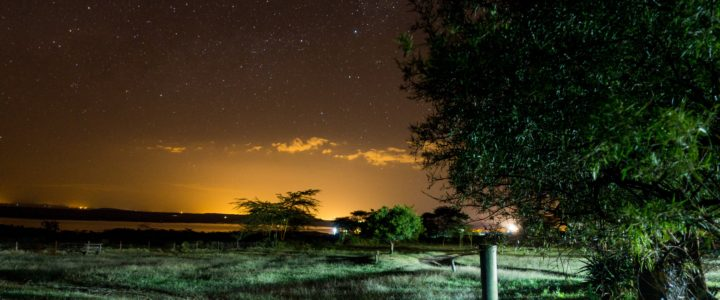 5 choses à savoir avant de visiter le Kenya