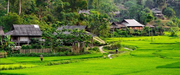 Visite province de Son La