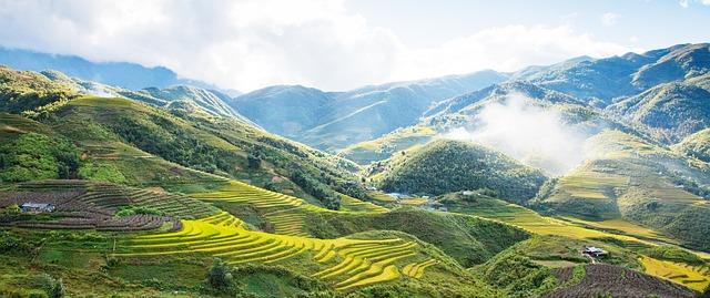 Circuit au Vietnam : pourquoi privilégier cette destination ?