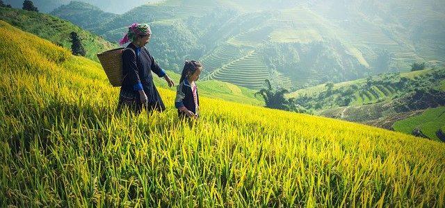 Tout ce qu'il faut savoir pour voyager au Cambodge