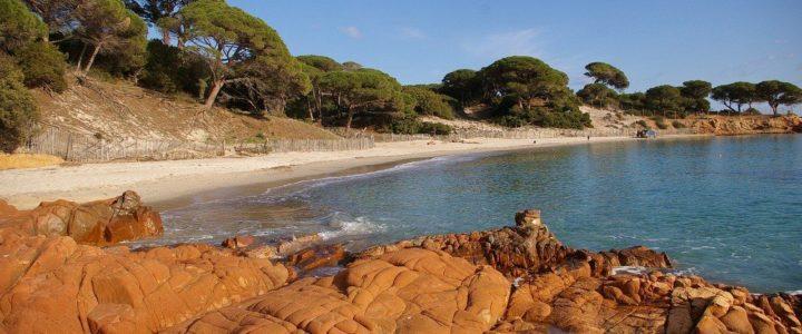 Quoi faire en Corse à la Toussaint ?